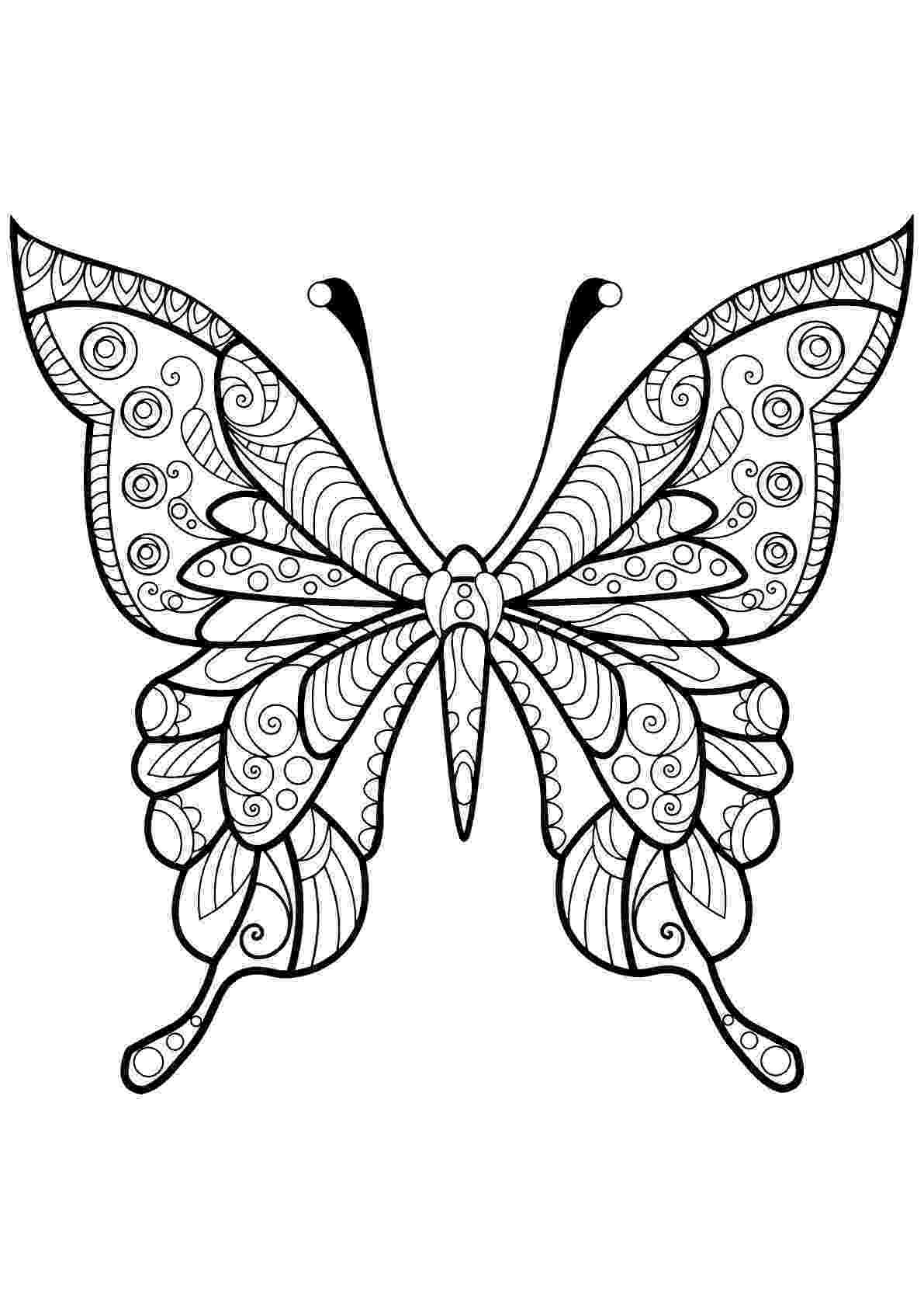 coloring pages for adults butterflies adult coloring pages butterfly realistic coloring pages adults for coloring pages butterflies