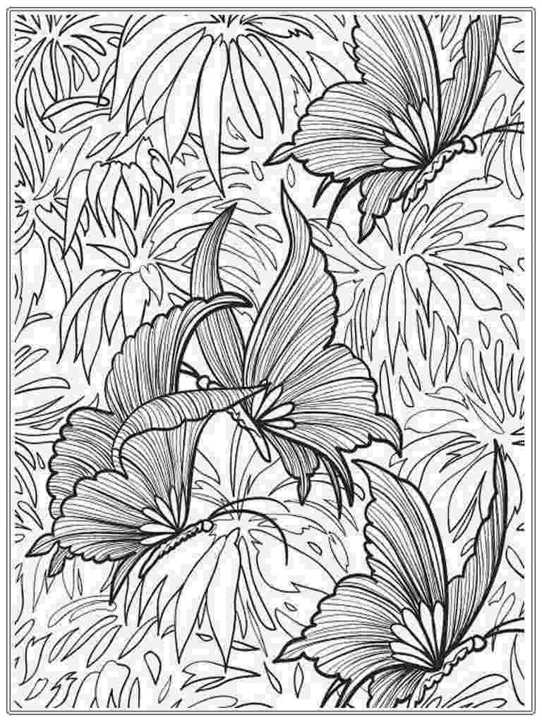 coloring pages for adults butterflies butterfly adult coloring books les baux de provence for pages adults butterflies coloring