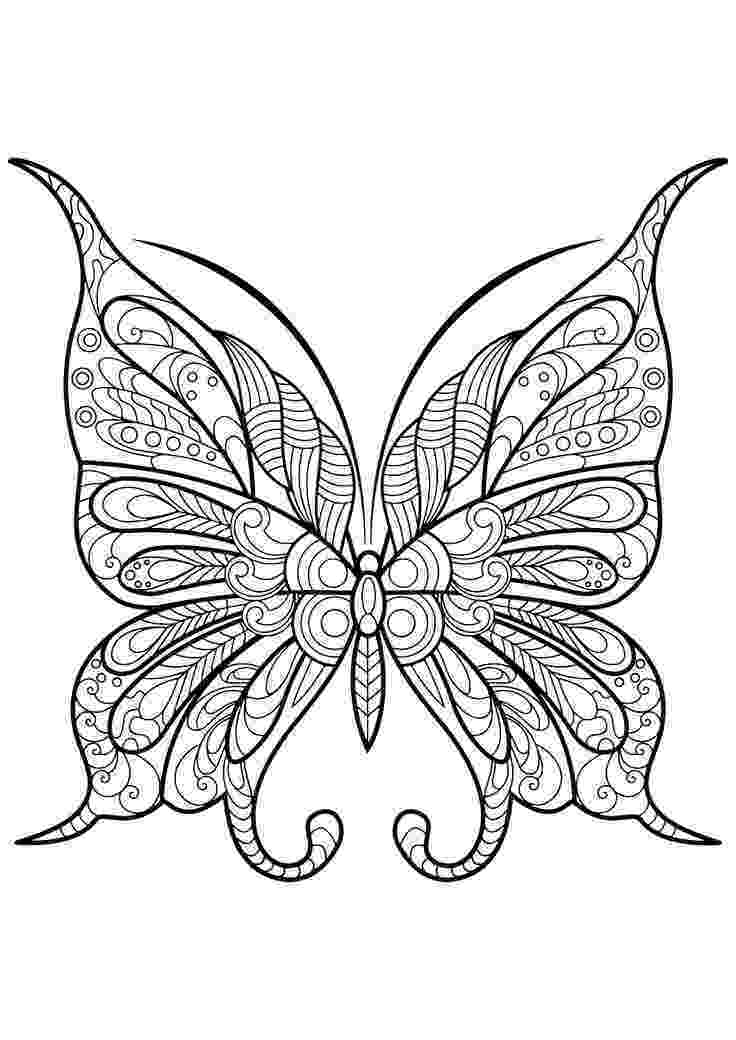 coloring pages for adults butterflies butterfly adult coloring page free printable pages adults for coloring butterflies