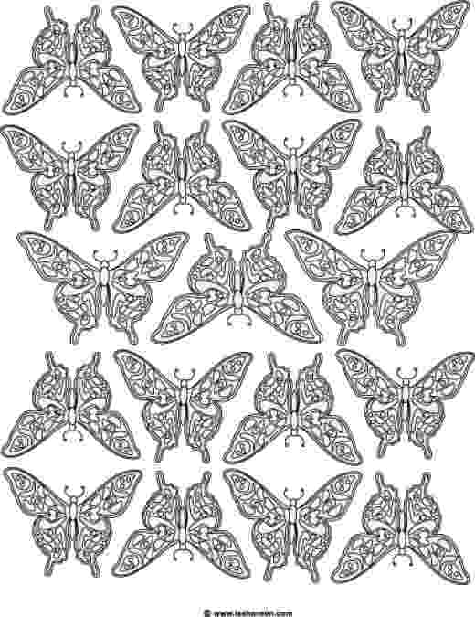 coloring pages for adults butterflies complicated coloring pages for adults free to print adults coloring butterflies pages for