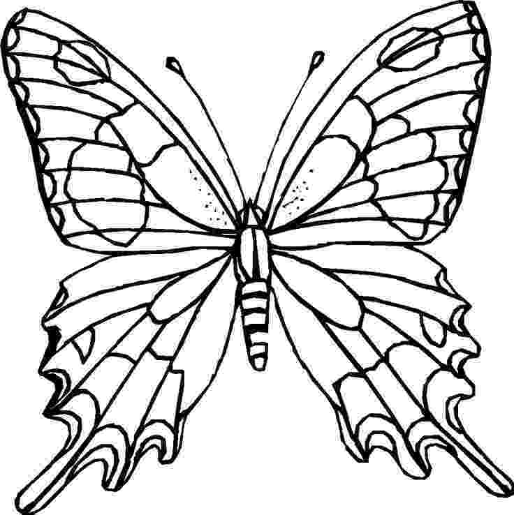 coloring pages for adults butterflies difficult coloring pages for adults coloring pagescom adults pages for butterflies coloring