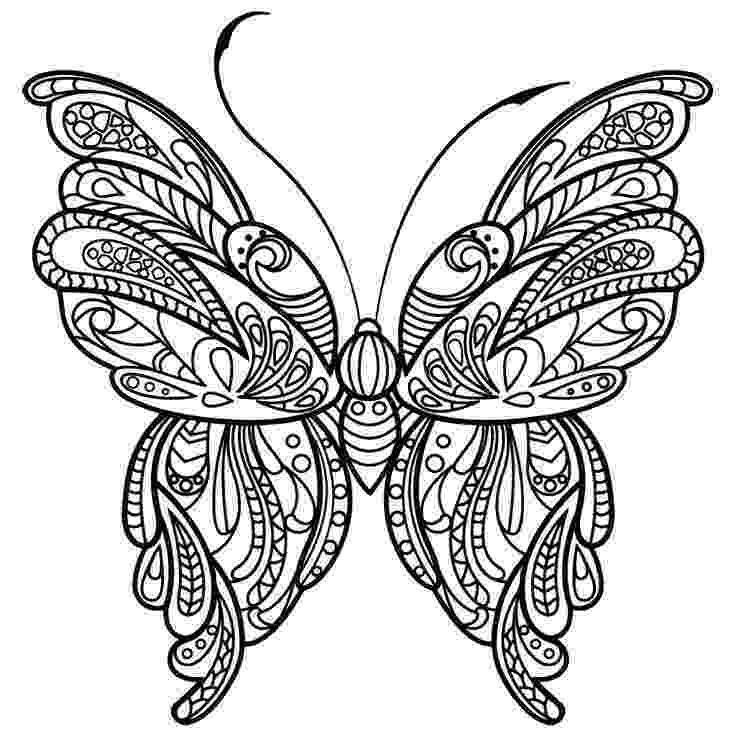 coloring pages for adults butterflies free printable butterfly coloring pages for kids coloring for adults butterflies pages