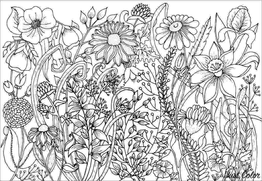 coloring pages for adults to print flowers print four free flower coloring pages pages to print adults coloring for flowers