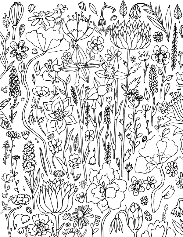 coloring pages for adults to print flowers spring flower adult coloring page for adults pages to print coloring flowers