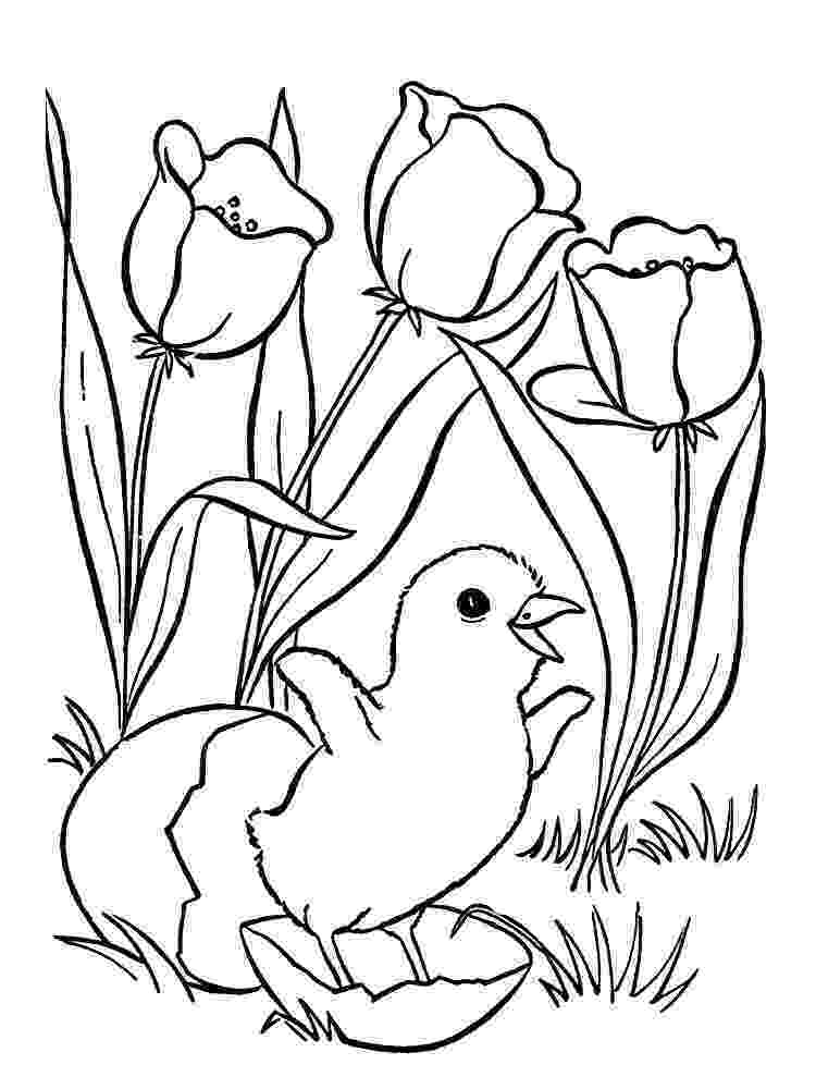 coloring pages for older girls coloring pages for 5 7 year old girls to print for free coloring pages girls for older