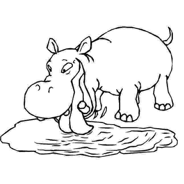 coloring pages hippo free printable hippo coloring pages for kids hippo pages coloring 1 2