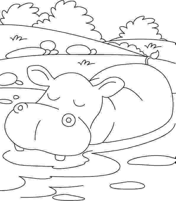 coloring pages hippo hippo coloring pages 360coloringpages pages coloring hippo