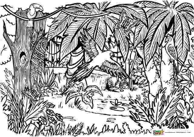 coloring pages jungle jungle coloring pages jungle coloring pages zootopia jungle coloring pages