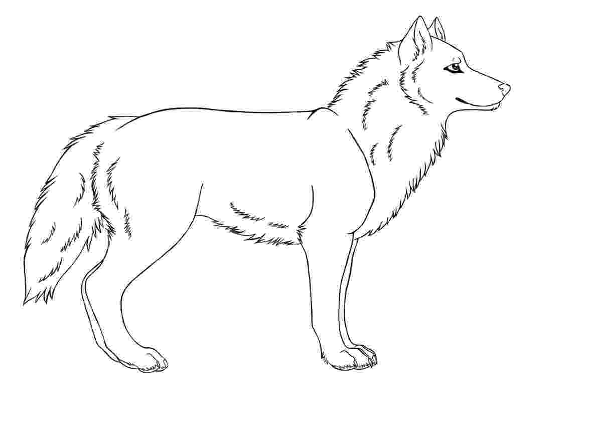 coloring pages of a wolf print download wolf coloring pages theme wolf a of coloring pages