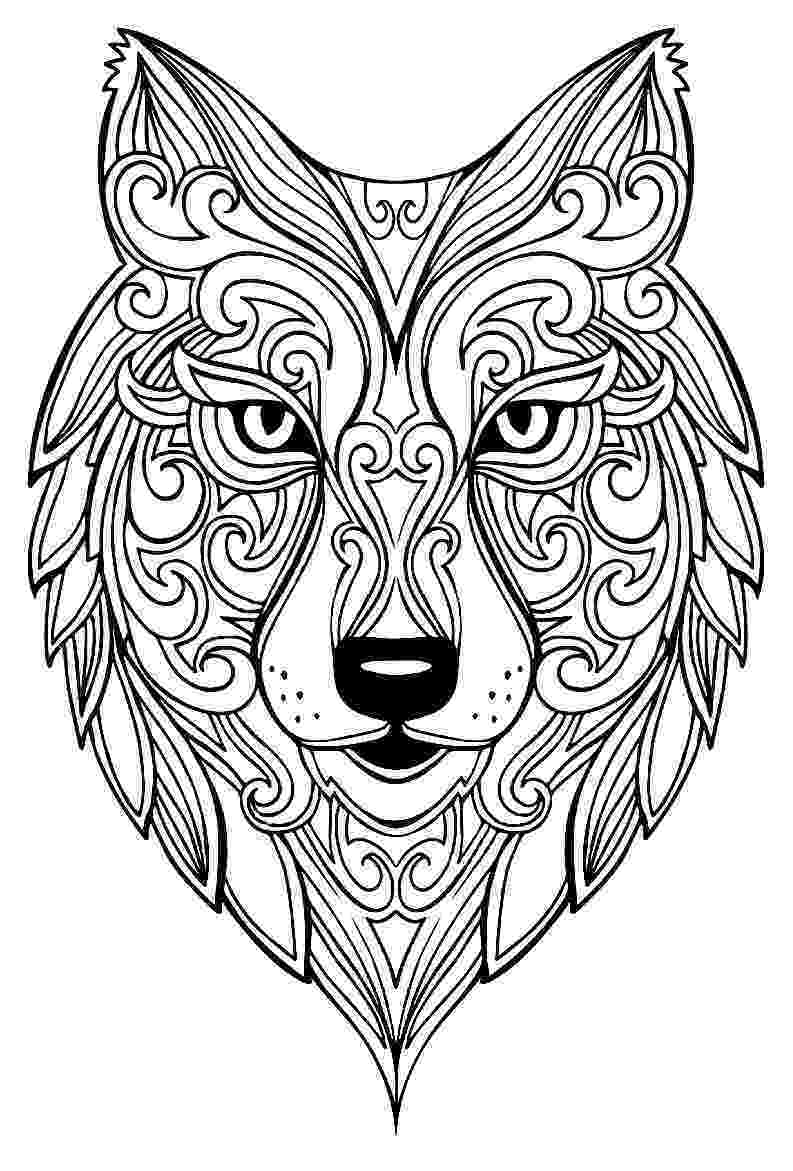 coloring pages of a wolf wolf drawing for kids at getdrawings free download wolf pages a of coloring