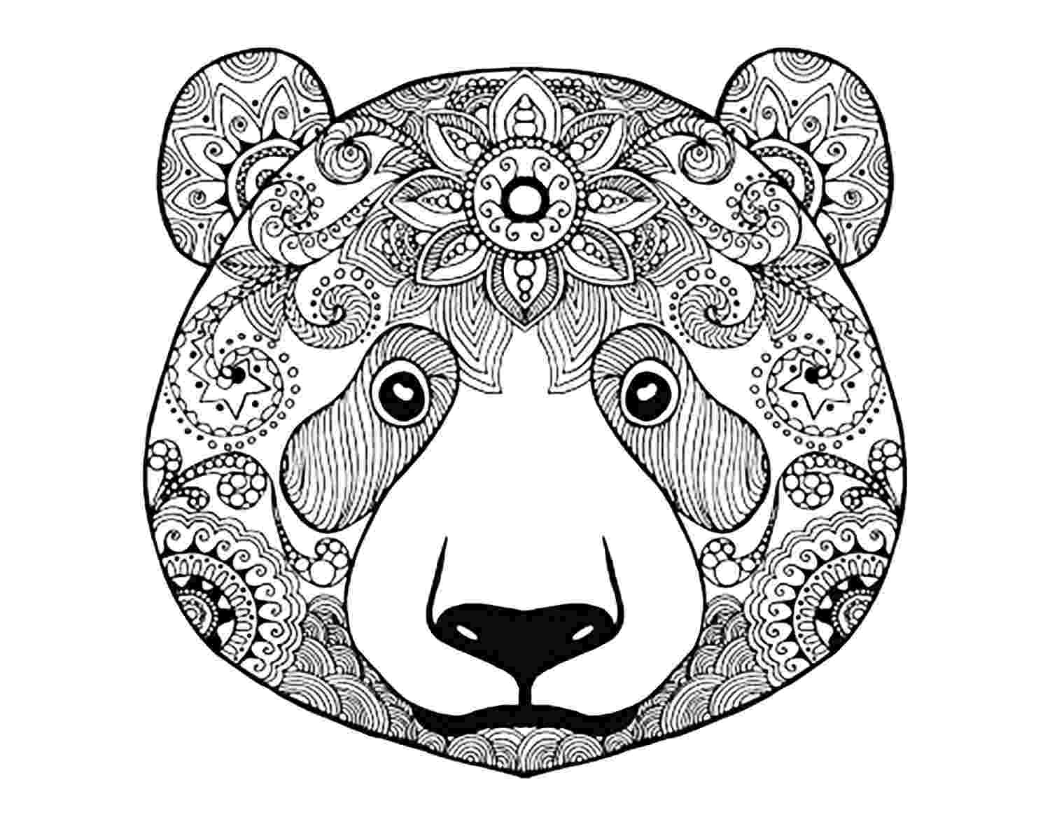 coloring pages of animals adult coloring pages animals best coloring pages for kids of pages coloring animals