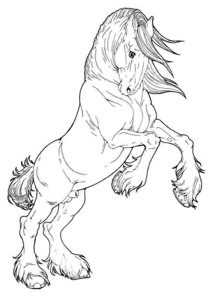coloring pages of animals horses horse coloring pages horse coloring pages animal pages of animals horses coloring