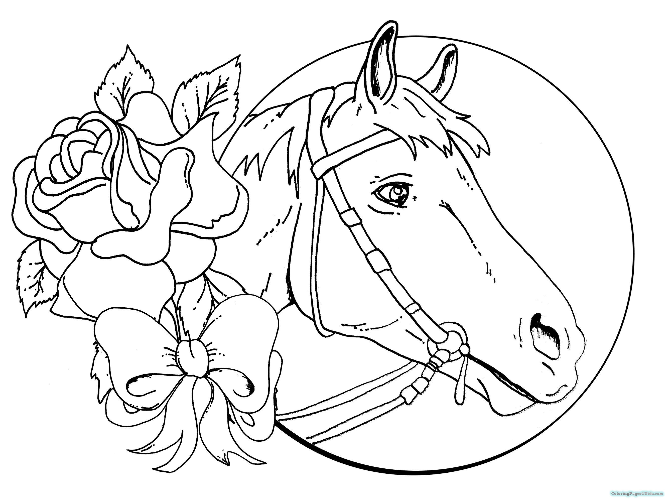 coloring pages of baby horses baby horse coloring page free printable coloring pages baby of pages horses coloring