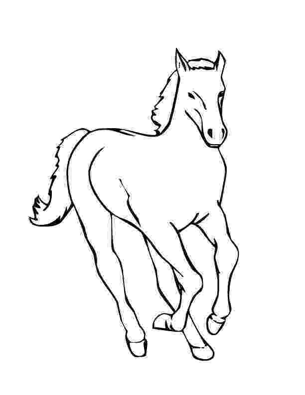 coloring pages of baby horses baby horse coloring pages getcoloringpagescom coloring baby of horses pages