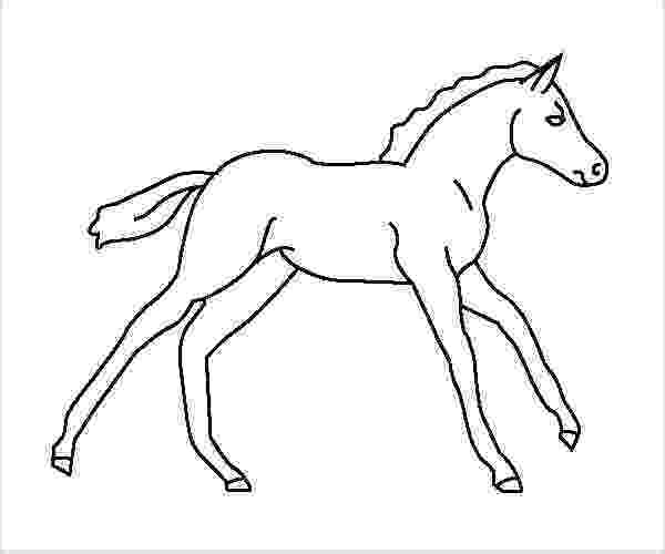 coloring pages of baby horses baby horses coloring pages coloring pages pinterest horses baby of pages coloring