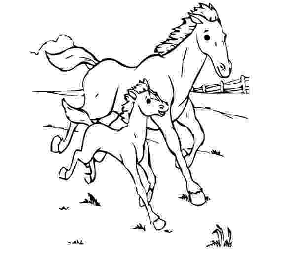 coloring pages of baby horses mommy baby horse coloring pages coloring pages for kids of coloring pages baby horses