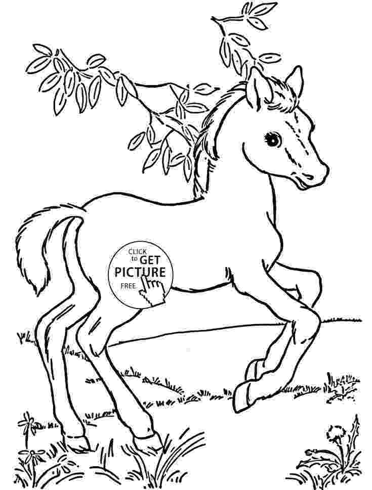 coloring pages of baby horses top 55 free printable horse coloring pages online of baby coloring horses pages