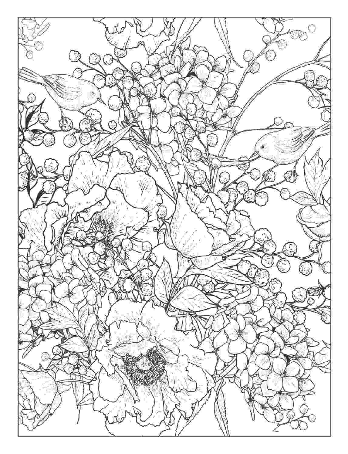 coloring pages of beautiful flowers beautiful flower coloring pages with delicate forms of coloring of beautiful flowers pages