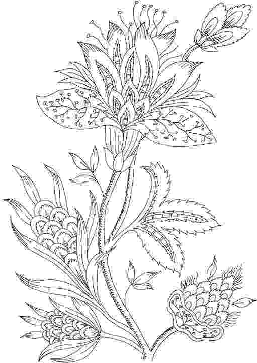 coloring pages of beautiful flowers beautiful flowers detailed floral designs coloring book pages beautiful flowers coloring of
