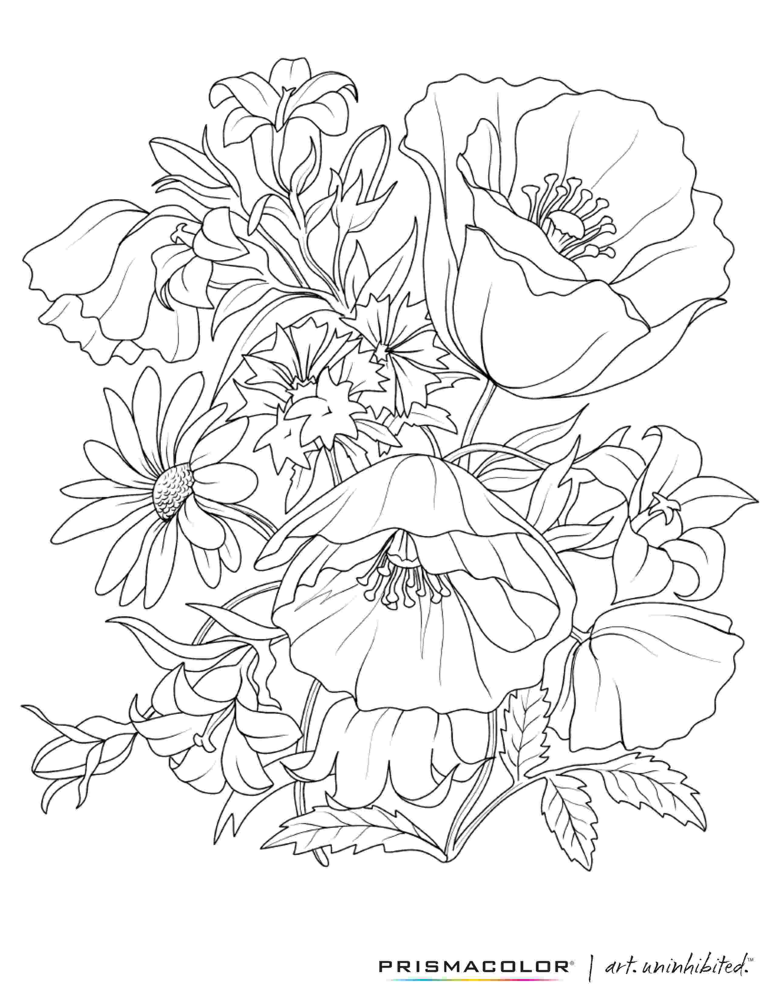 coloring pages of beautiful flowers what a beautiful flower adult coloring page colouring pages beautiful of coloring flowers