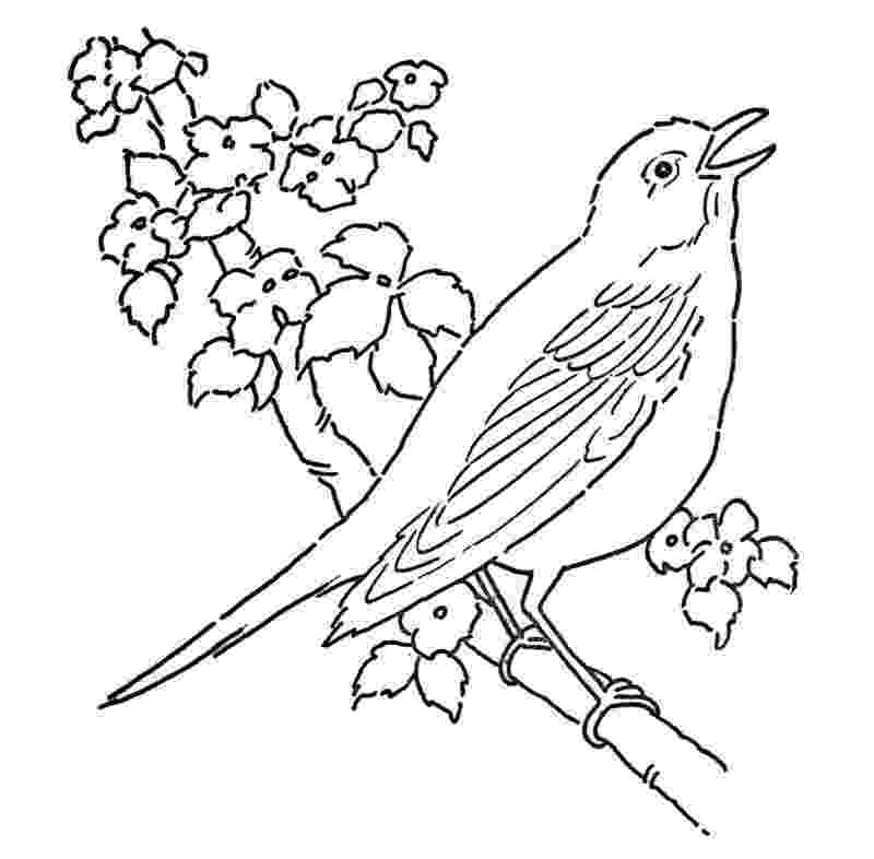 coloring pages of birds and flowers blue bird coloring page birds of coloring flowers pages and