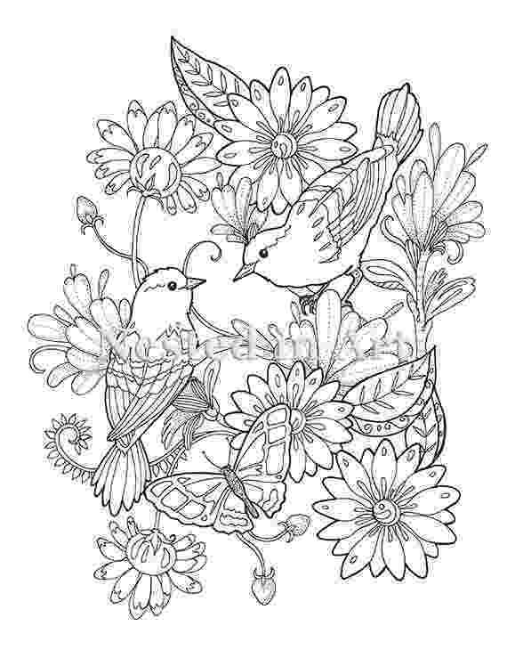coloring pages of birds and flowers outline drawing of birds at getdrawingscom free for of flowers birds coloring and pages
