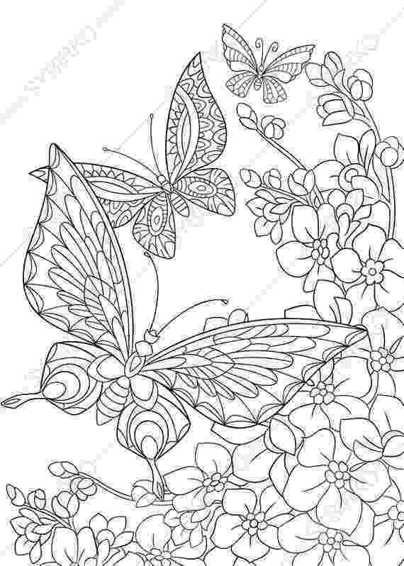coloring pages of butterflies and flowers butterflies and flowers coloring pages getcoloringpagescom coloring flowers butterflies pages of and