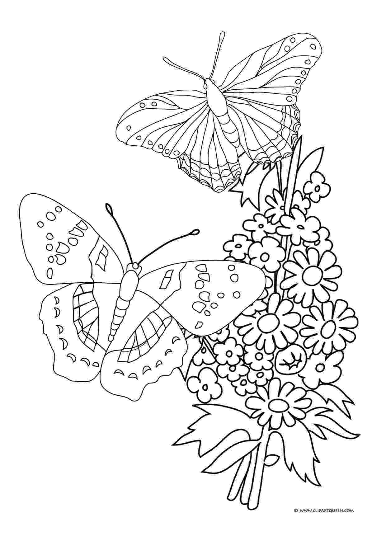 coloring pages of butterflies and flowers butterfly coloring pages pages coloring flowers and butterflies of