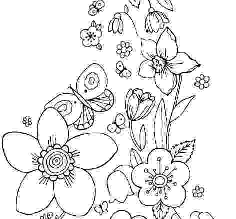 coloring pages of butterflies and flowers butterfly flying drawing at getdrawingscom free for of and flowers coloring butterflies pages