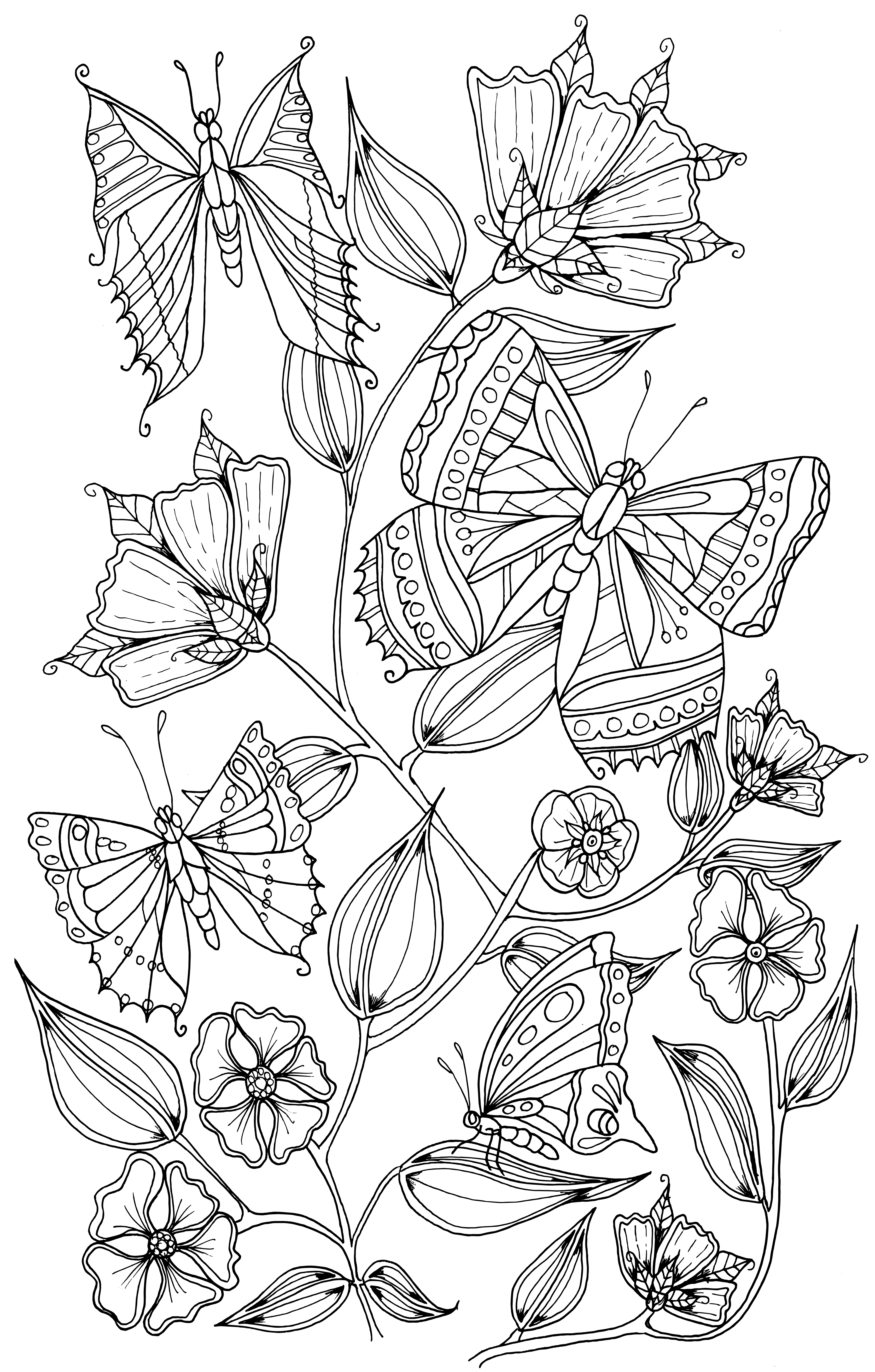 coloring pages of butterflies and flowers free coloring pages of butterflies and flowers download pages flowers coloring of and butterflies