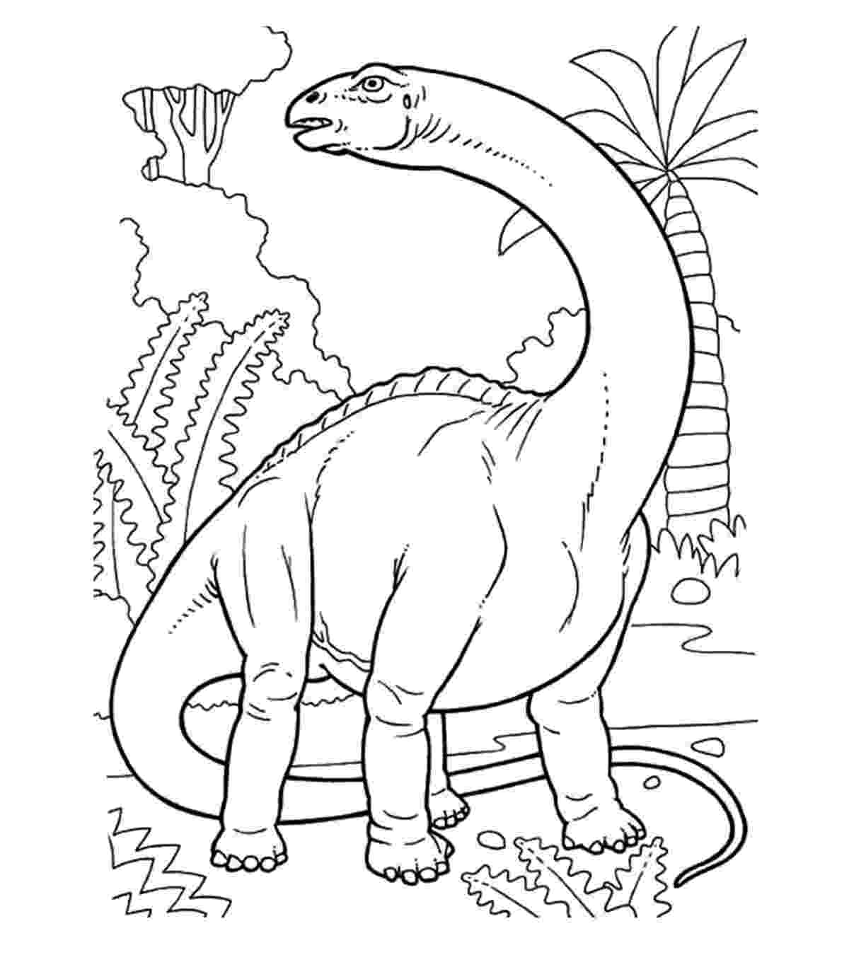 coloring pages of dinosaurs for preschoolers fun dinosaur coloring pages imagiplay coloring for preschoolers of dinosaurs pages
