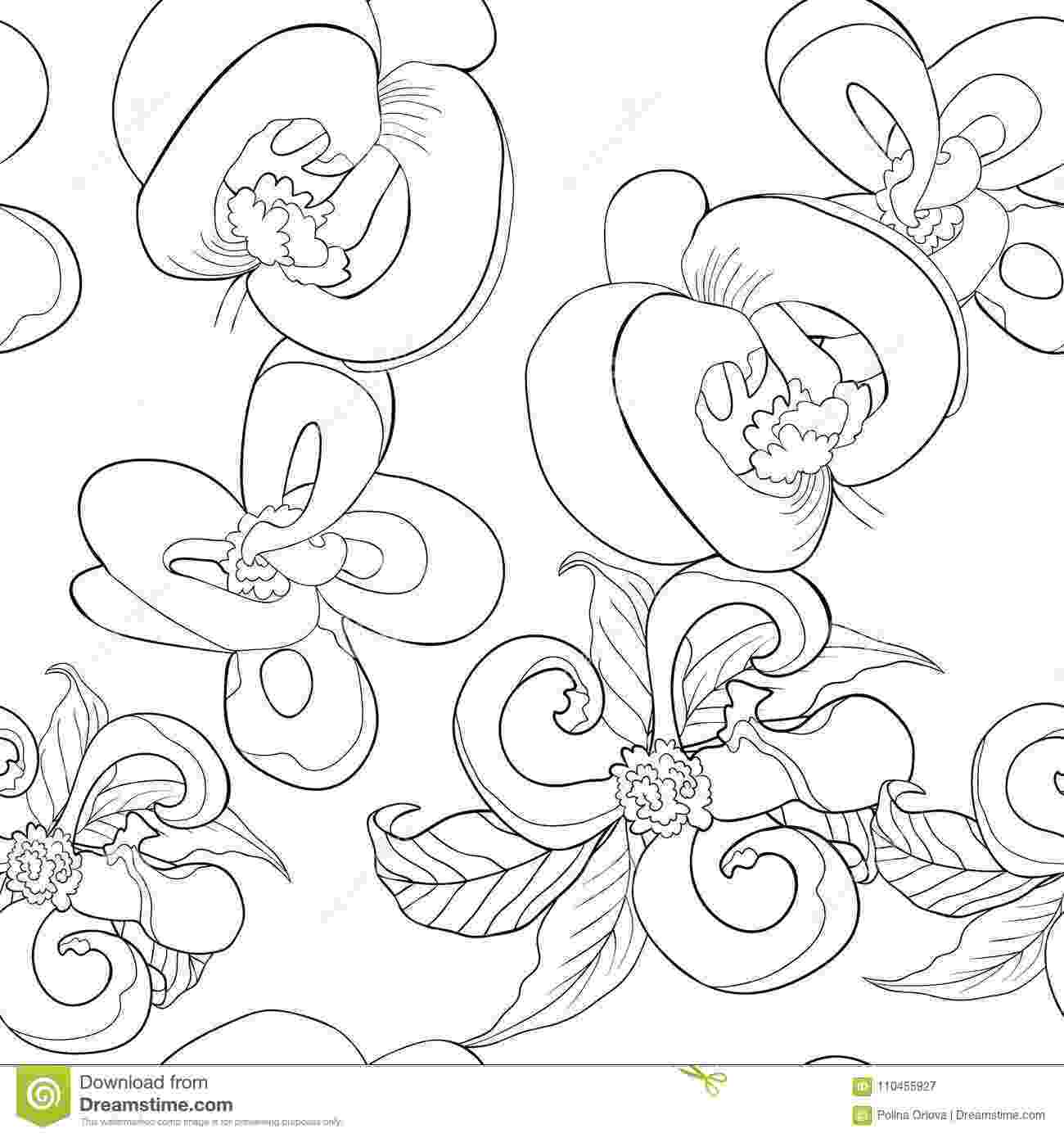 coloring pages of dogwood flowers coloring seamless pattern with florida dogwood flower of flowers coloring dogwood pages