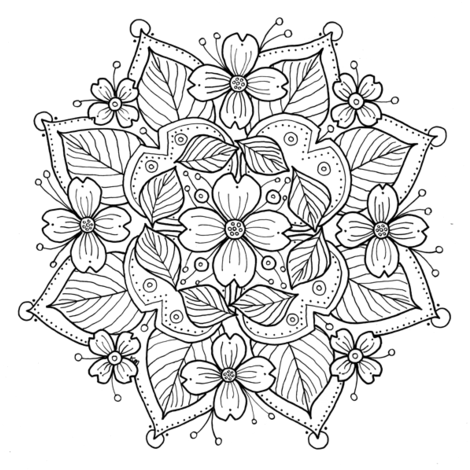 coloring pages of dogwood flowers dogwood tree coloring page at getcoloringscom free of coloring flowers dogwood pages