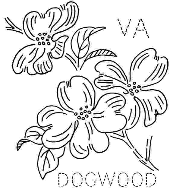 coloring pages of dogwood flowers usa flower coloring pages penn wyoming usa islands of coloring pages dogwood flowers