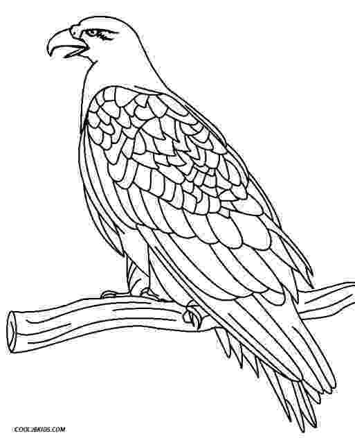 coloring pages of eagles free eagle coloring pages eagles of pages coloring