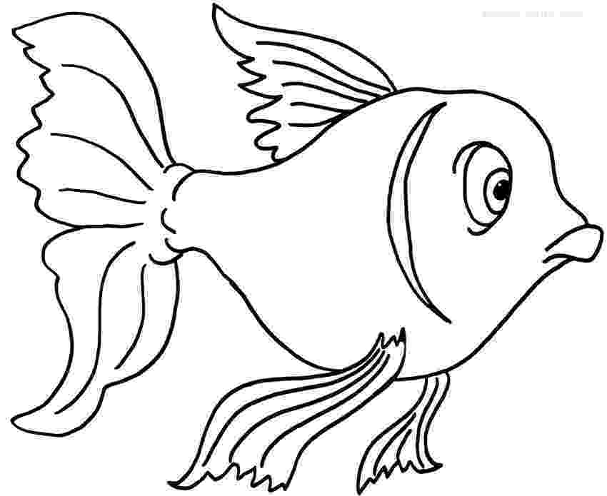 coloring pages of goldfish printable goldfish coloring pages for kids cool2bkids coloring goldfish pages of 1 1