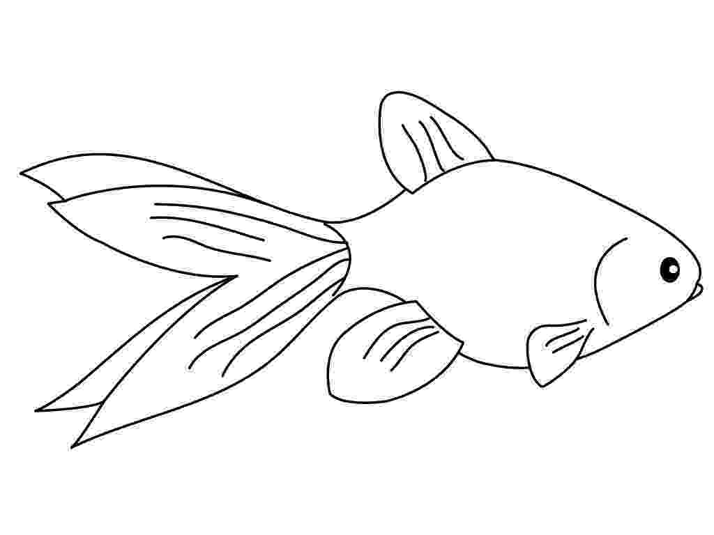 coloring pages of goldfish printable goldfish coloring pages for kids cool2bkids of coloring pages goldfish