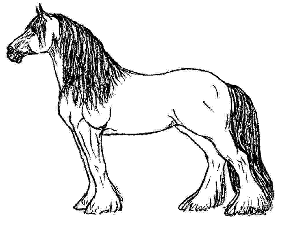 coloring pages of horses and ponies horse coloring pages getcoloringpagescom and horses pages of ponies coloring