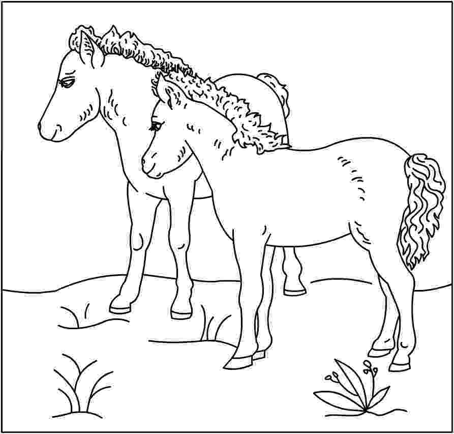 coloring pages of horses and ponies horse herd coloring pages pages coloring horses of ponies and