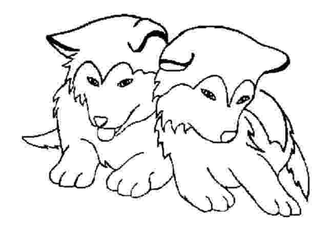 coloring pages of huskies cute husky coloring pages coloring pages pinterest pages coloring of huskies