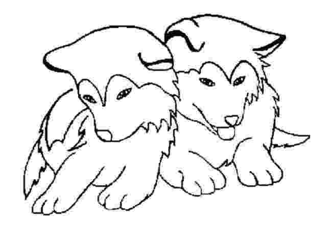 coloring pages of huskies dogs coloring sheets chaz hound dog forums of huskies coloring pages
