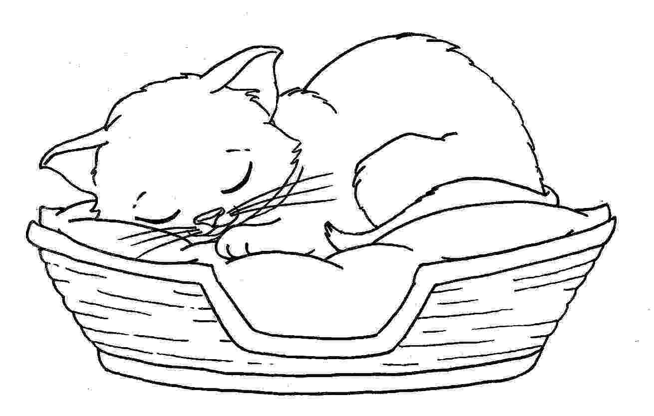 coloring pages of kittens cat coloring pages coloring pages of kittens