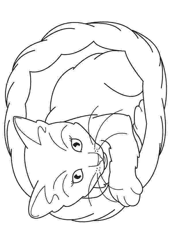 coloring pages of kittens kitten coloring pages getcoloringpagescom pages coloring kittens of