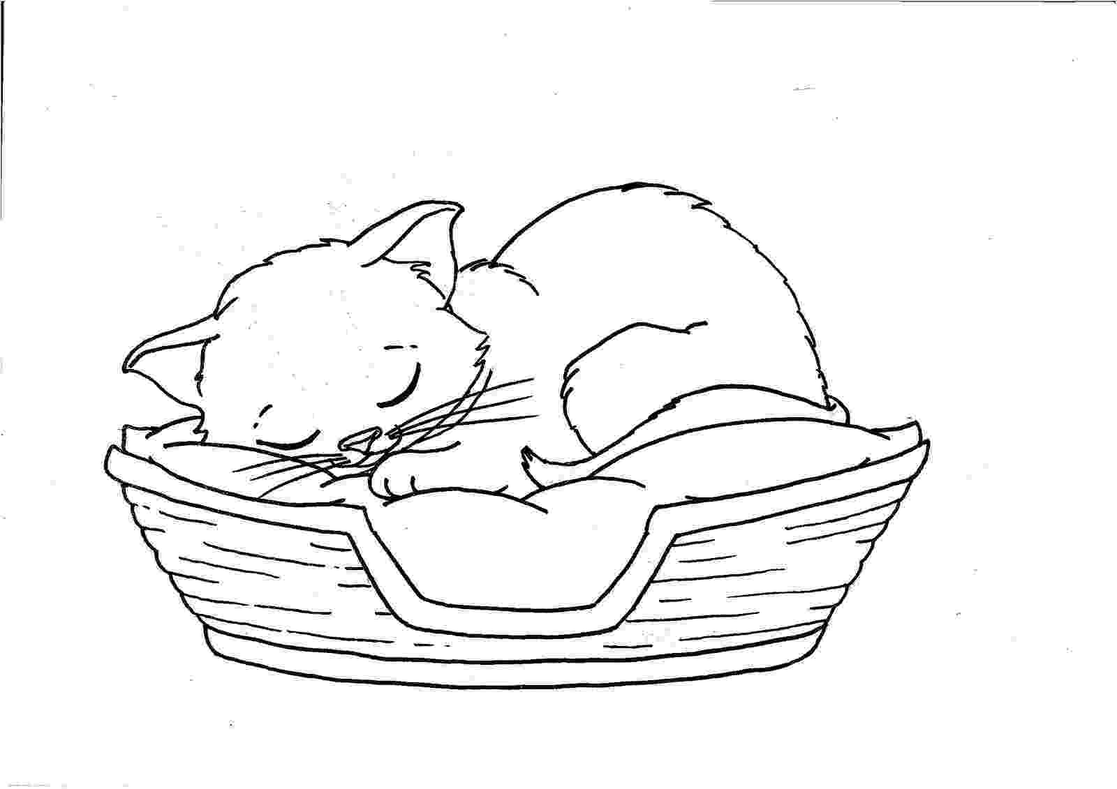 coloring pages of kittens to print cat coloring pages print kittens coloring to pages of