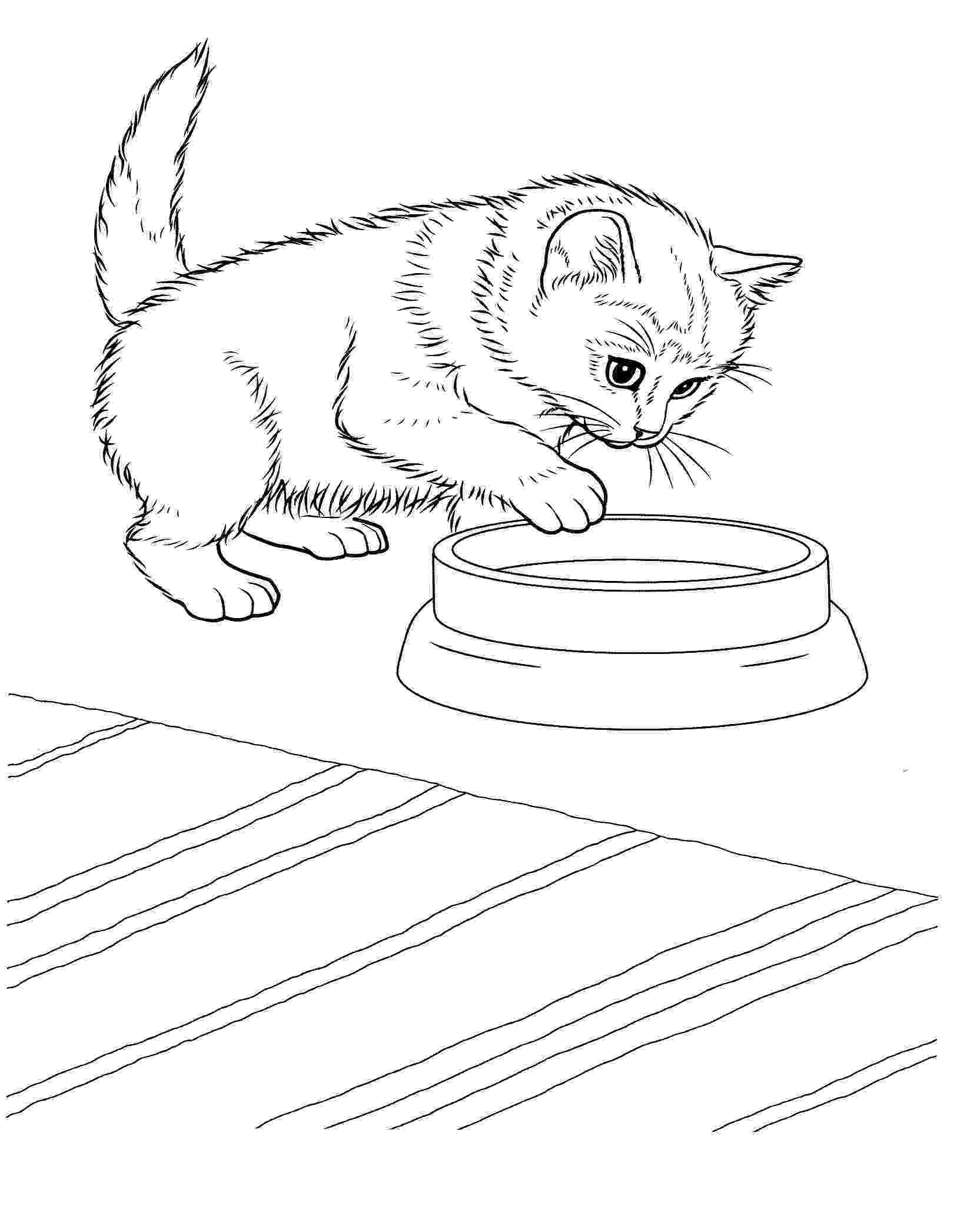 coloring pages of kittens to print free printable kitten coloring pages for kids best to print pages of kittens coloring