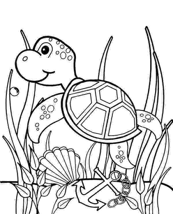 coloring pages of sea turtles printable sea turtle coloring pages for kids cool2bkids pages turtles coloring of sea