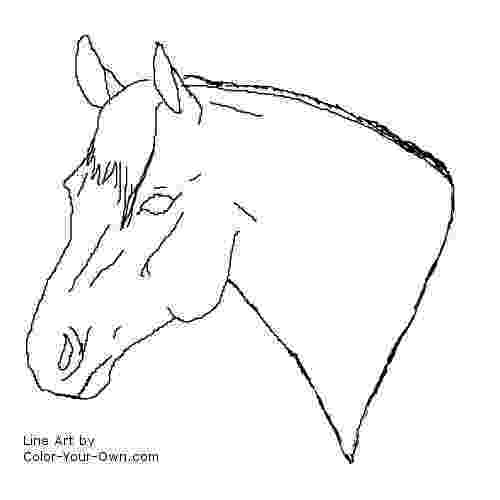 coloring pictures of horses heads 1000 images about mandalas on pinterest mandala coloring heads pictures horses of