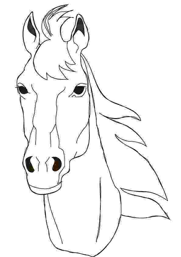 coloring pictures of horses heads horse head coloring page getcoloringpagescom heads of horses pictures coloring