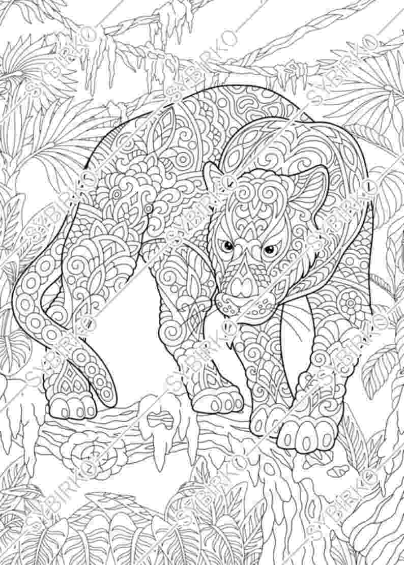 coloring pictures of panthers black panther coloring pages best coloring pages for kids pictures coloring panthers of