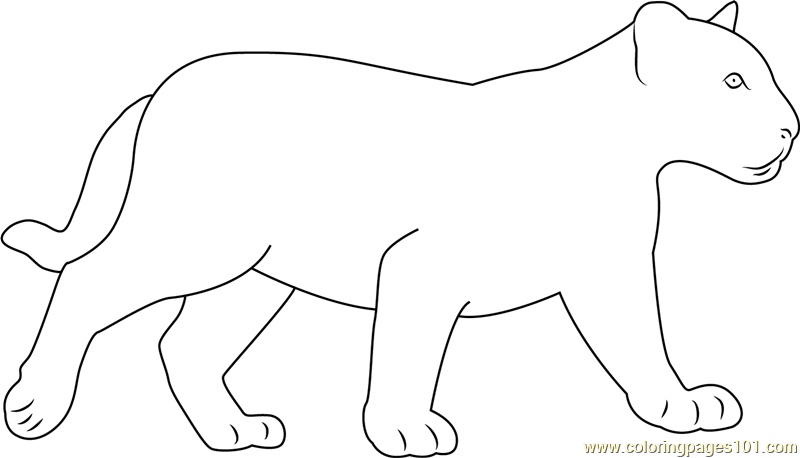 coloring pictures of panthers free heroes of color panthers coloring pictures of